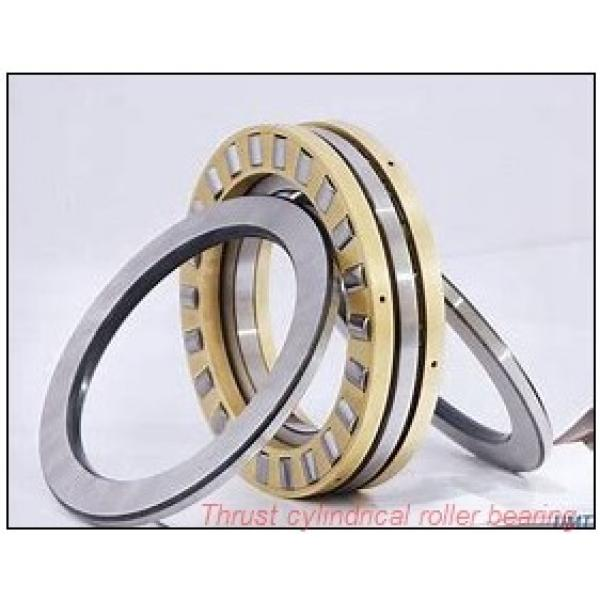 50TPS119 TPS thrust cylindrical roller bearing #2 image