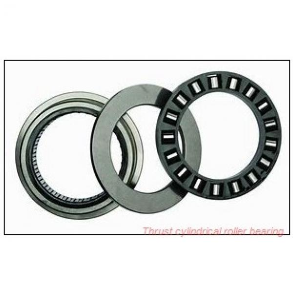 80TPS136 TPS thrust cylindrical roller bearing #2 image