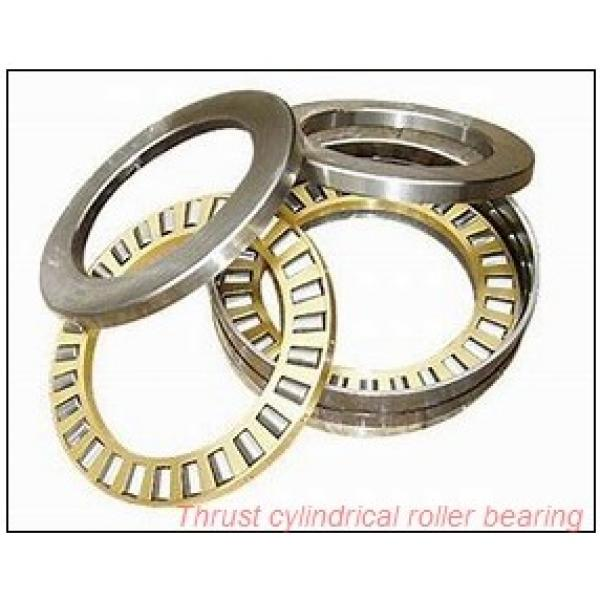 40TPS116 TPS thrust cylindrical roller bearing #1 image