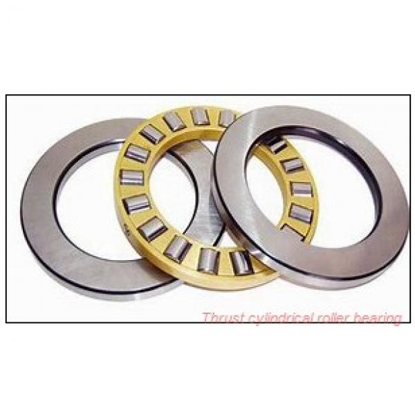 80TPS136 TPS thrust cylindrical roller bearing #1 image